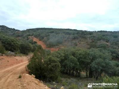 Monumento Natural Tetas de Viana - Trillo; rutas senderismo madrid; excursiones